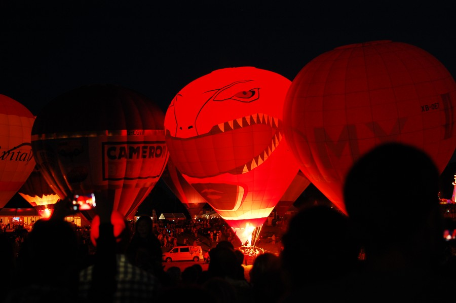 Balloon Fiesta 14
